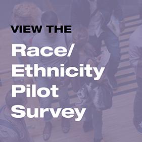 View the Race and Ethnicity Survey Pilot